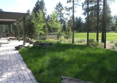 Sunriver NO MOW Meadow